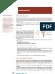 Bone Metastasis English
