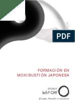 Moxibustion japonesa