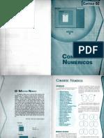 CURSO PRÁTICO DE MATEMÁTICA - CAP 2 - CONJUNTOS NUMÉRICOS