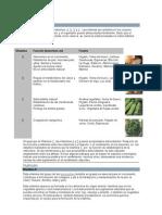 13490871-Vitaminas-y-nutricion