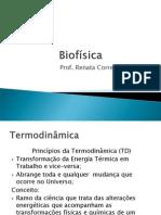 Aula Biofisica termodinâmica