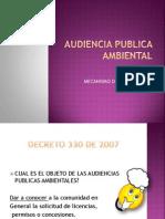 AUDIENCIA PUBLICA AMBIENTAL