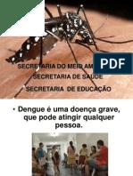 Semana de Combate a Dengue