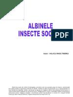 Albinele - insecte sociale