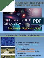 CLASE EvolucionCell
