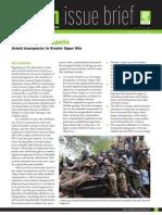 HSBA SIB 18 Armed Insurgencies Greater Upper Nile