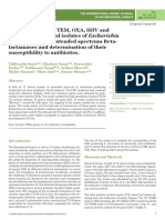 Detection of genes TEM, OXA, SHV and CTX-M in 73 clinical isolates of Escherichia coli producers of extended spectrum Betalactamases and determination of their susceptibility to antibiotics.