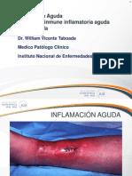 Teoria 6 Respuesta Inflamatoria Inmune Aguda Final 19 Set Med Hum[1]