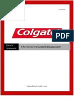 Promotion Management Final Report