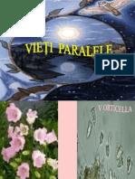 Vieţi paralele