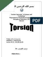 3 Torsion
