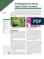 Coccidiosis - Management