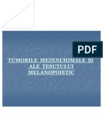 TEMA 11.Tumorile mezenchimale