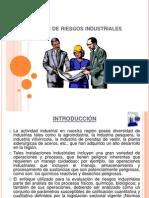 exp Gestión de riesgos industriales
