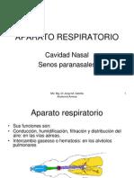 AnatomiaUSAL_modulo_6_1