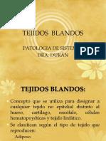 TEJIDOS_BLANDOS