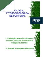 Tipologia Fitos1