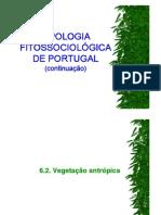 Tipologia Fitos2