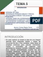 UNIDAD 5-INTEGRACION