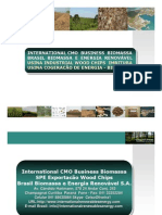 International CMO Brasil Biomassa Unidade Wood Chips-Cogeracão Energia