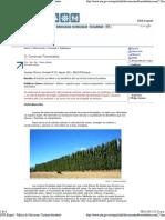 INTA Esquel - Publica de Salicáceas_ Cortinas forestales