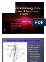 Molecular Immunology -Cells