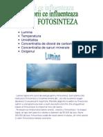 Factorii Ce Influenteaza Fotosinteza