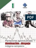 Plantaciones y Despojo Guatemala sXXI