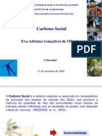 Metodologia Do Carbono Social
