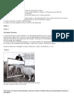 Redação EM-dissertação -PRODUÇÃO TEXTUAL