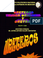 URETEROS VEJIGA