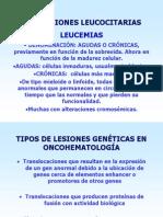 anomalias leucocitarias