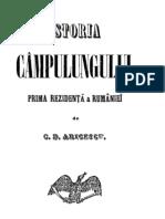C.D.aricescu-Istoria Campulungului II