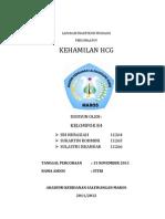 KEHAMILAN HCG
