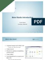 Webinar Mule Studio