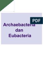 18033370 Archaebacteria Dan EubacteriaxiKelompok 7