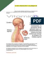 La Verdad Acerca de La Vitamina B12