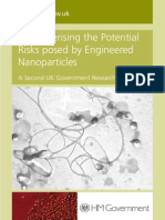 nanoparticles-riskreport07