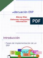 SII08 - Adecuacion ERP