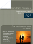 Los Caracteres Sexuales Ppt