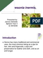 Henna, Lawsonia Inermis1