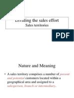 Dividing the Sales Effort