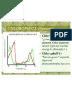 Non-cyclic Photophosphorylation Notes 10-26 and 10-28