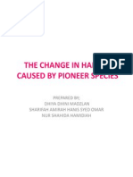 The Change in Habitat Caused by Pioneer Species