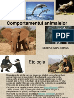 Comportamentul animalelor