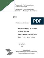 SAS - o Essencial Da Linguagem
