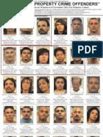 Property Crime Offenders - Nov. 2011
