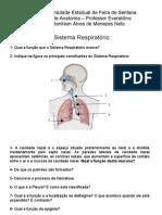 Questões - Sistema Respiratório