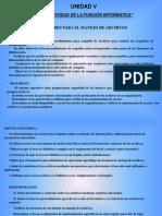 normatividaddelafuncininformatica-05