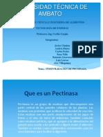 TRABAJO DE PECTINASAS